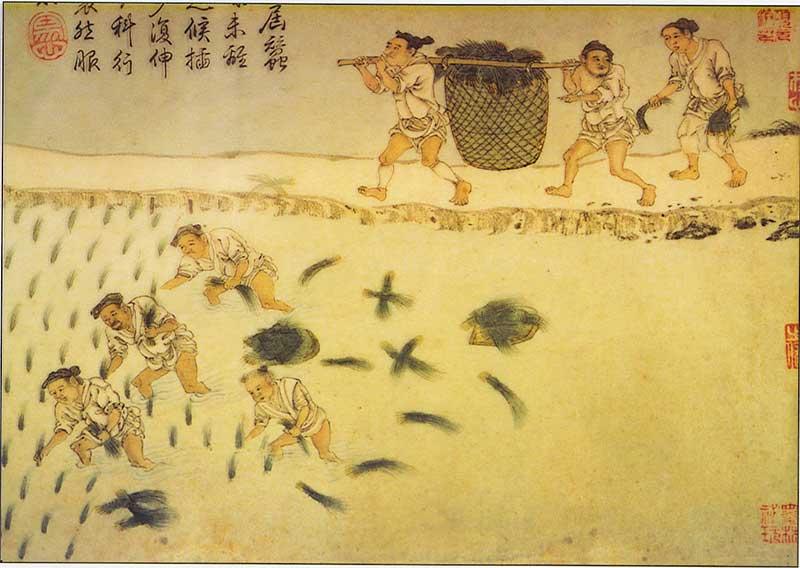 shang china vs ancient egypt